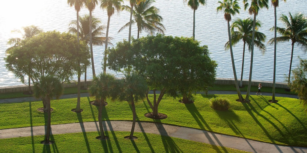 Mandarin Oriental's Jogging Path takes you through refreshing sea breezes and palm trees.
